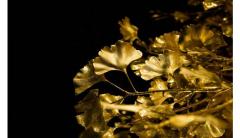 宁波黄金回收的价格是看黄金的含金量吗?